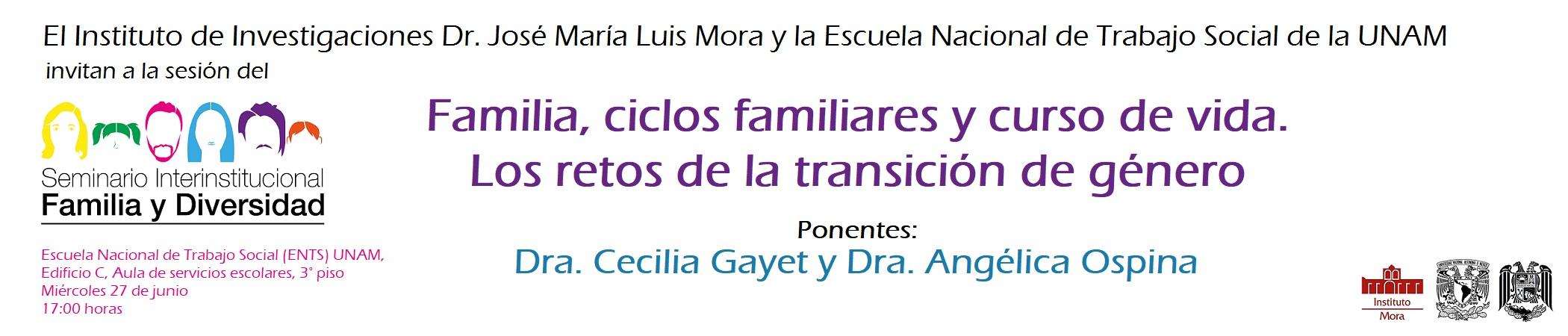 Seminario Permanente Interinstitucional Familia y Diversidad